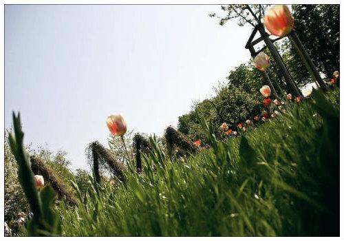 Парк Бритцер в Германии
