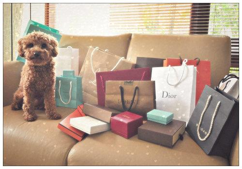Пакеты и собачка.