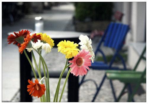 Цветы в вазе